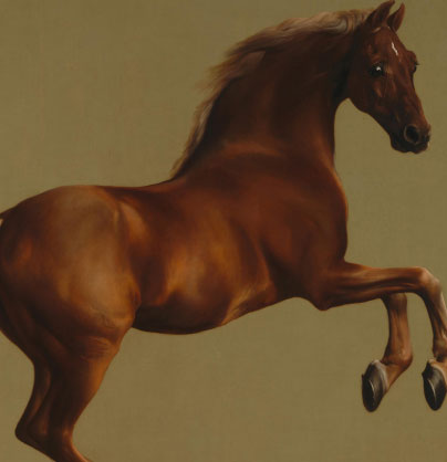 'Whistlejacket' – George Stubbs